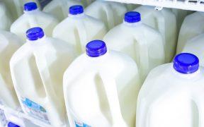 Como almacenar leche