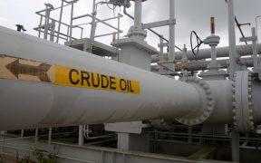 OPEP: demanda global de petróleo superará la cifra inédita de 100 millones de barriles por día en 2022