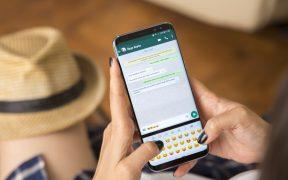 nuevos-stickers-whatsapp-oms-como-conseguirlos