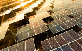 Dos empresas obtienen suspensión contra acuerdo del Cenace que limita energías limpias