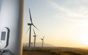 Tras ola de amparos, Cenace permite reanudar pruebas de plantas de energía limpia