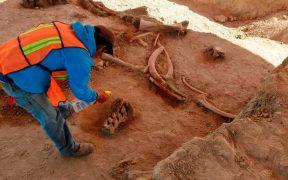 Una persona trabaja en el lugar donde se encontraron restos de mamuts: Foto:AP