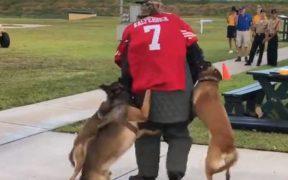 Un video muestra el ataque de los perros entrenados en el museo de la Marina. (Foto: EFE)