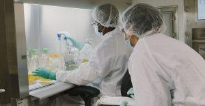 Laboratorios utilizan anticuerpos ante la falta de una vacuna.