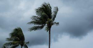 Tormenta tropical 'Josephine' se debilita en el Atlántico