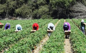 Productores de Chihuahua toman caseta por conflicto de agua.