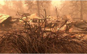 Trump visitará California para informarse sobre los incendios