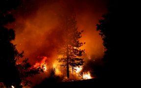 """Demócratas critican a Trump por afirmar que los incendios fueron por una """"mala gestión"""""""