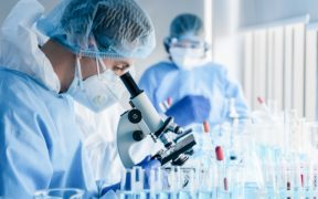 Científicos investigan nanoanticuerpo en camellos contra Covid-19