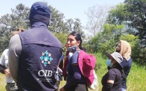 En México hay 4 mil 92 fosas clandestinas y se han exhumado 6 mil 900 cuerpos: Encinas