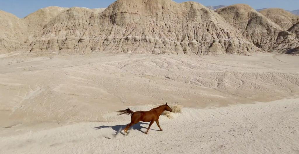 Emmanuel 'El Chivo' Lubezki presenta el video HDR del iPhone 12 Pro