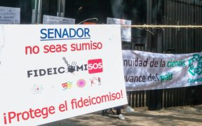 Ayuda para activistas y periodistas en México debería reforzarse: AI lamenta extinción de fideicomisos