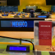 Después de 16 años, México regresa al comité contra la discriminación de la mujer de la ONU
