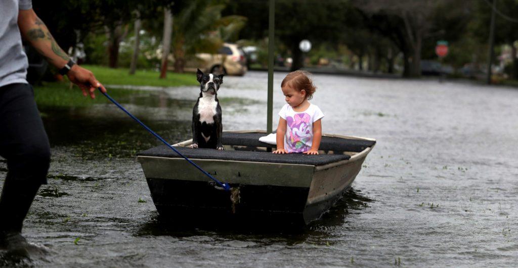 Ciudades de Florida comienzan la limpieza tras el paso de 'Eta'