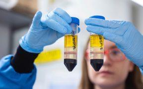 Error de fabricación de AstraZeneca pone en duda los resultados del estudio de la vacuna contra Covid-19