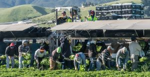 Tribunal Supremo examina orden de Trump que busca excluir a migrantes indocumentados del censo