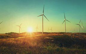 Coparmex pide al gobierno federal incorporar energías renovables para generar electricidad