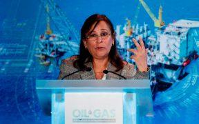 Rocío Nahle sí realizó propaganda gubernamental en Twitter: TEPJF