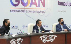 nadie-querra-invertir-mexico-reforma-industria-electrica-amlo-goan