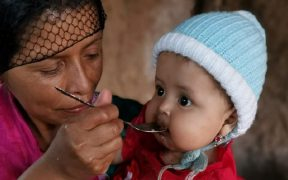 En Latinoamérica se triplicaron los niveles de inseguridad alimentaria severa en 2020, revela ONG