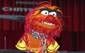 Los Muppets también tienen advertencia de contenido en la plataforma Disney+