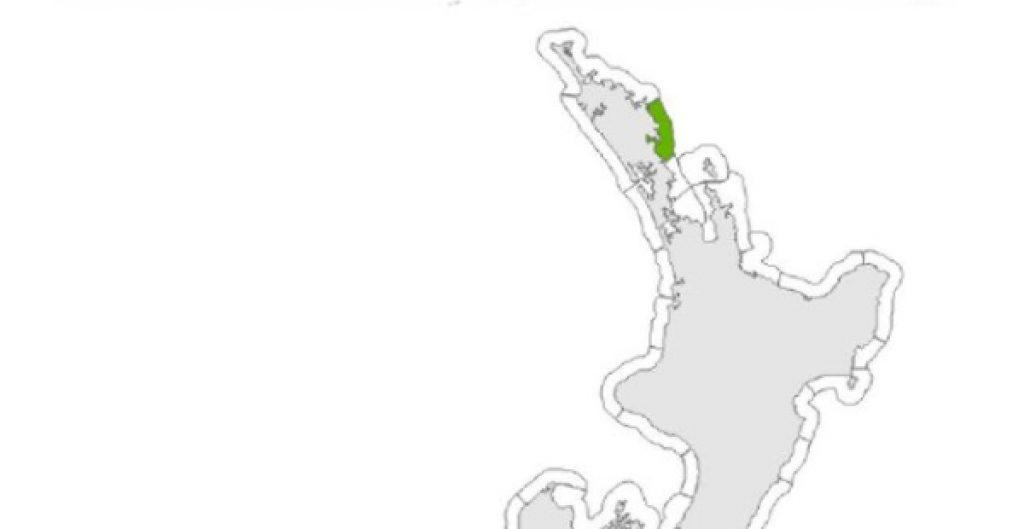 Nuevo terremoto de 8.1 grados sacude a Nueva Zelanda; alertan por posible tsunami