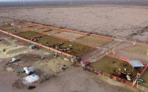 Gobierno de Chihuahua lanza convocatoria para uso de rancho incautado a César Duarte
