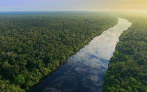 El asteroide que acabó con los dinosaurios pudo crear la selva de las Amazonas