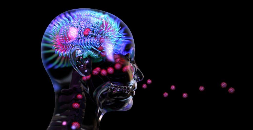 El coronavirus no infecta el cerebro, pero puede provocar fuertes daños, advierte estudio