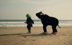 Brozo y Loret van a Acapulco y encuentran al Toro…