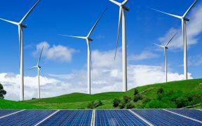 Reforma eléctrica de AMLO impide avance de México en energías limpias, asegura Cofece