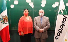 Insulza expresa preocupación por violencia durante proceso electoral en México