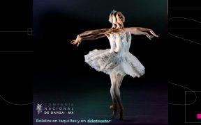 La Compañía Nacional de Danza regresará al Palacio de Bellas Artes; presentará fragmentos de obras clásicas