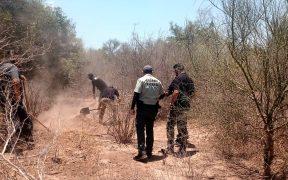 Fiscalía de Sonora confirma que restos hallados en Vícam son de Tomás Rojo