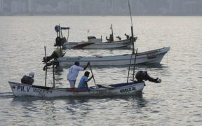 México sigue sin cumplir sus obligaciones del T-MEC en materia pesquera, según informe de Oceana