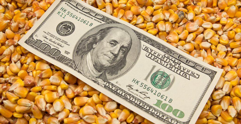 México gastó 2.9 mil mdd en importar maíz, trigo, frijol y huevo en cinco meses, un 51% más que hace un año