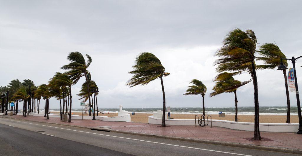 Se forma la tormenta tropical 'Hilda' en el océano Pacífico