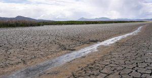 Grave sequía lleva a imponer severas restricciones de agua a zonas agrícolas de California
