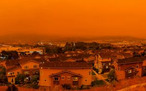 incendios-forestales-covid-shutterstock
