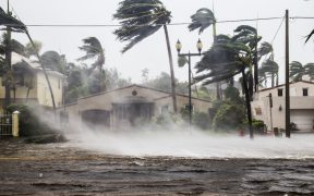 """""""Grace"""" avanza sobre el sureste de México con dirección a Veracruz; volverá a ser huracán el viernes"""