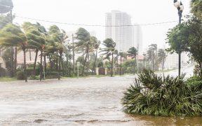 Se forma la tormenta tropical 'Mindy' en el Golfo de México; se dirige a Florida