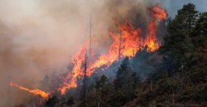 Incendio sin control calcina al menos 80 hectáreas en los Andes de Perú