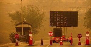 """Incendios """"Colony"""" y """"Paradise"""" amenazan el Parque Nacional de Secuoyas en California"""