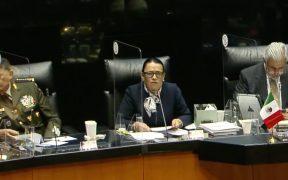 Participación de Fuerzas Armadas en tareas de seguridad es temporal, asegura Rosa Icela