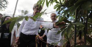Sembrando Vida fomentaría la deforestación y AMLO busca reactivar energía con hidrocarburos, advierte HRW a John Kerry