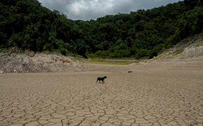 Ya no hay debate: El cambio climático es resultado de la acción humana, concuerdan científicos