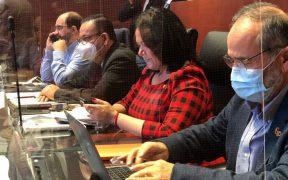 grupo-plural-senadores-voz-no-voto-mesa-directiva-sanchez-cordero